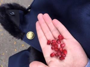 holding pomagranates
