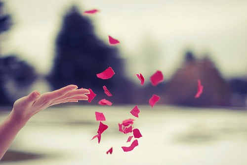 releasing flower petals