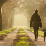 The Healing Power of a Good Long Walk
